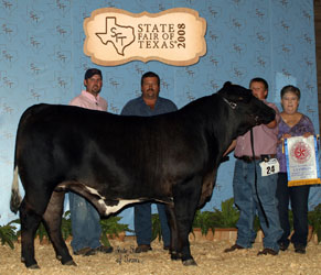 Previous Winners Tusa Cattle Show Cattle In Reagan Texas